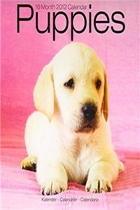 eBook Puppies 2012 Wall Calendar #30424-12 download