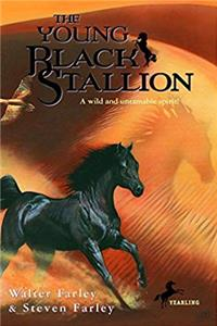 eBook The Young Black Stallion: A Wild and Untamable Spirit! download