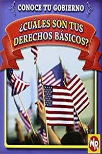 eBook Cuales son tus derechos basicos?/ What Are Your Basic Rights? (Conoce Tu Gubierno/ Know Your Government) (Spanish Edition) download